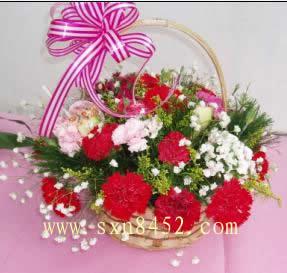 石夏兰【无私的爱】康乃馨花篮鲜花图片展示。