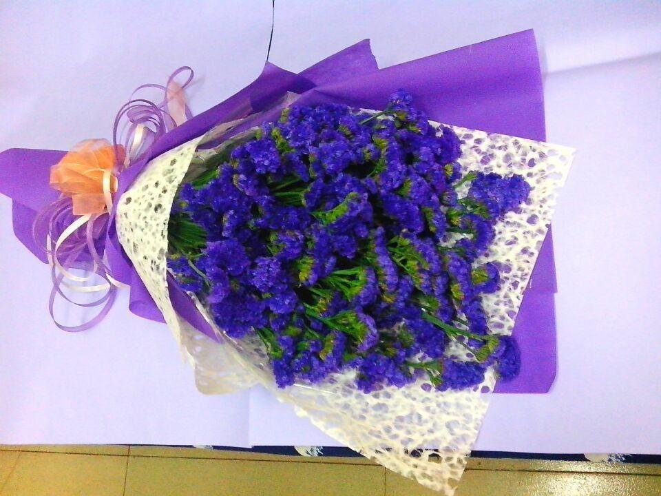 石夏兰勿忘我,鲜花,生日花束,探望花束,接站花束鲜花图片展示。