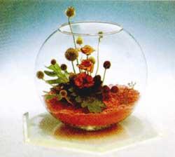石夏兰艺术瓶花,微景观鲜花图片展示。