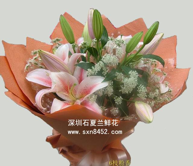 石夏兰【合家欢乐】百合花鲜花图片展示。