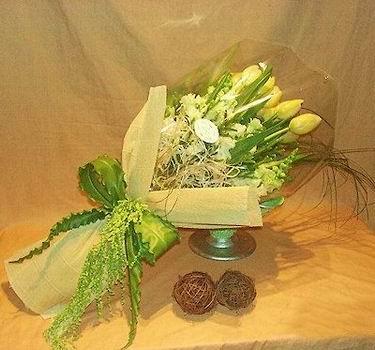 石夏兰9朵郁金香鲜花图片展示。