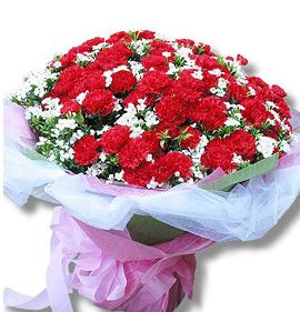 石夏兰【永远守护妈妈的幸福】99康乃馨花束鲜花图片展示