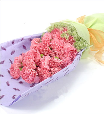 石夏兰【永葆青春】18支粉色康乃馨鲜花图片展示。