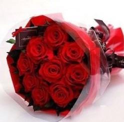 石夏兰特价,探视鲜花,速递,岗厦,生日鲜花,订深圳爱情鲜花,9红玫瑰花,南山花店,探望,9朵花鲜花图片展示。