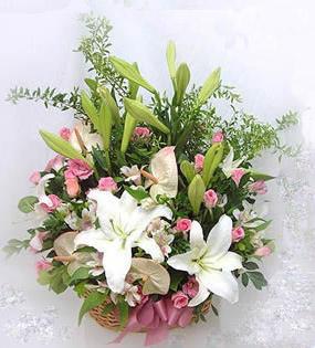 石夏兰【前程似锦】会长花篮鲜花图片展示。