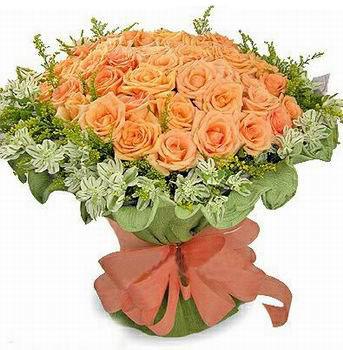 石夏兰66朵香槟玫瑰鲜花图片展示。