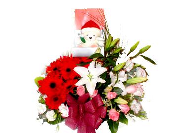 石夏兰送儿童花�@鲜花图片展示