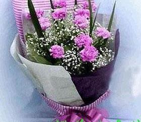 石夏兰16枝粉香石竹鲜花图片展示