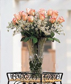 石夏兰19枝粉玫瑰送女友鲜花图片展示。
