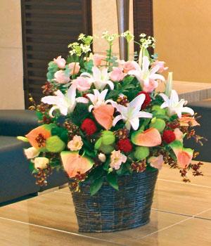 石夏兰手提花篮,礼仪花篮,商务台面花篮,礼品花篮,罗湖店鲜花图片展示。