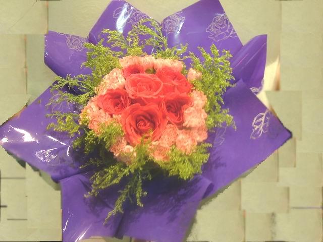 石夏兰【心灵的港湾】6枝红玫瑰与康乃馨花束鲜花图片展示。
