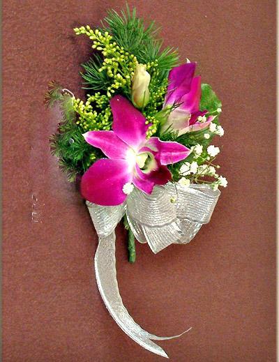 石夏兰洋兰胸花鲜花图片展示