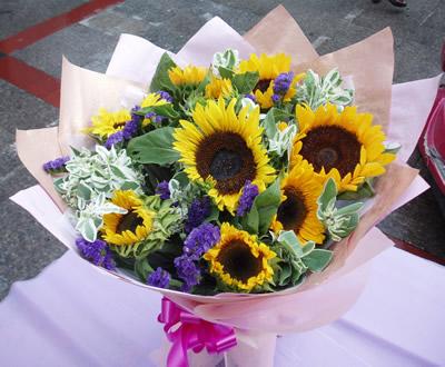 石夏兰9朵向日葵鲜花图片展示。
