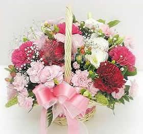 石夏兰【殷切的爱】康乃馨花篮鲜花图片展示。