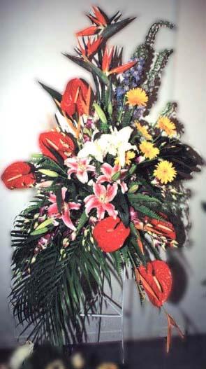 石夏兰五福临门,罗湖区,老乡,同乡,祝贺,西式开业花篮,红火烛鲜花图片展示。