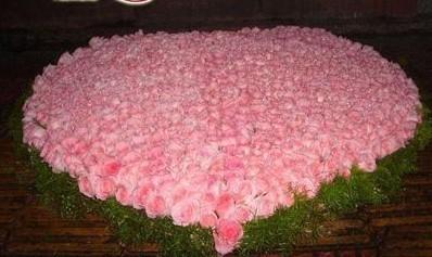 石夏兰七夕鲜花图片展示。