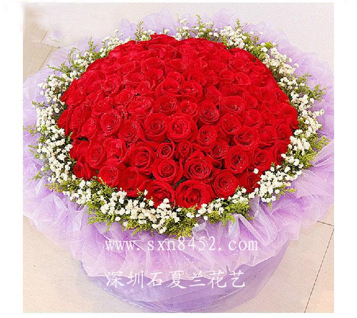 石夏兰进口特价,白,粉,红玫瑰,鲜花速递,求婚表白,必备之神器,女神最爱款,生日花,66朵鲜花图片展示。