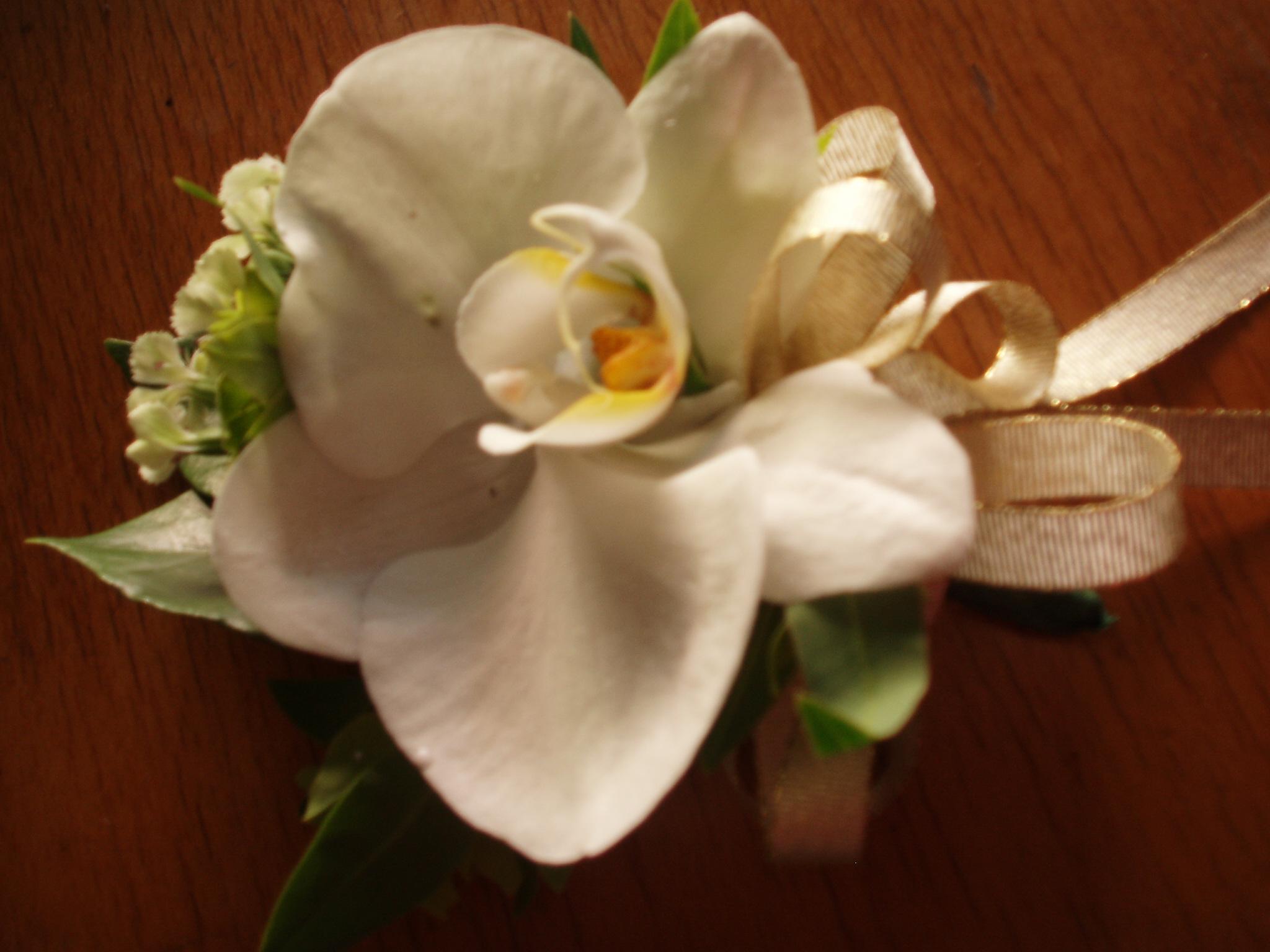 石夏兰大会胸花鲜花图片展示。