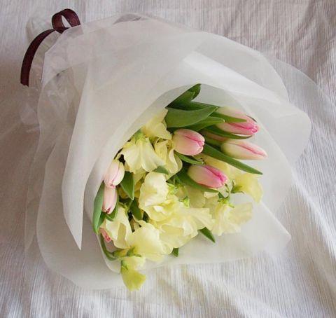 石夏兰18朵郁金香鲜花图片展示。