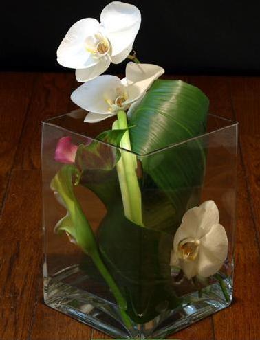 石夏兰白兰花篮,艺术插花,蝴蝶兰,马蹄莲,餐台花,玻璃瓶插花鲜花图片展示。
