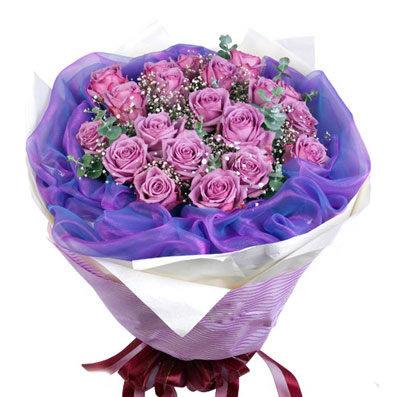 石夏兰18朵紫玫瑰鲜花图片展示。