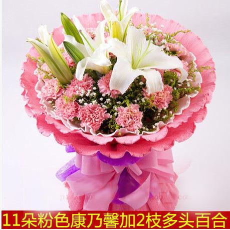 石夏兰11枝康乃馨鲜花图片展示。