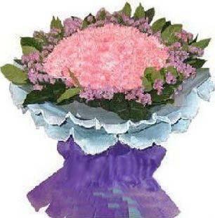 石夏兰50朵粉红康乃馨花束妇女节鲜花图片展示