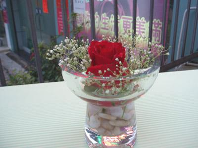 石夏兰11支红玫瑰配绿叶与满天星鲜花图片展示。