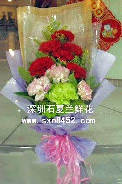 石夏兰【娇艳】13枝多色康乃馨花束鲜花图片展示。