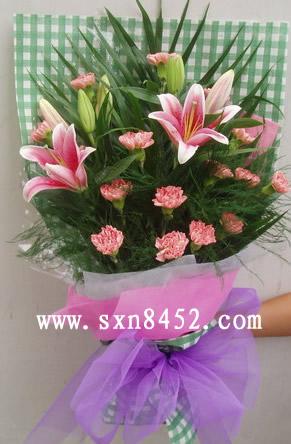 石夏兰14朵康乃馨 【母亲,您辛苦了】鲜花图片展示。