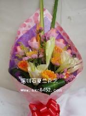 石夏兰幸福常伴,12朵太阳花,热卖,生日鲜花,幸福常伴,福田,莲花北村花店,速递鲜花图片展示。