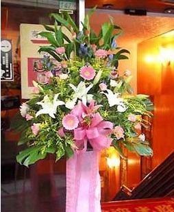 石夏兰热销,特价花篮,特价开业花篮,百合,玫瑰花,扶郎花,富贵竹鲜花图片展示。