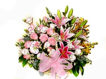 石夏兰学生升学鲜花图片展示。