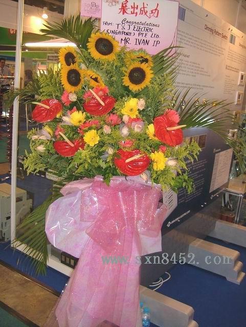 石夏兰一展成功,华南城,展览大花篮,文博会书,画展,港式鲜花图片展示。