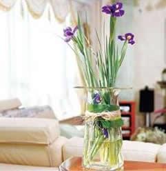 石夏兰瓶花鲜花图片展示。