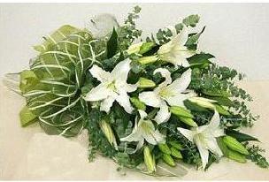 石夏兰百合花束鲜花图片展示。
