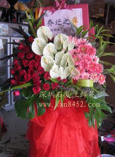 石夏兰金融街,福永庆典花蓝,行业会议鲜花鲜花图片展示。