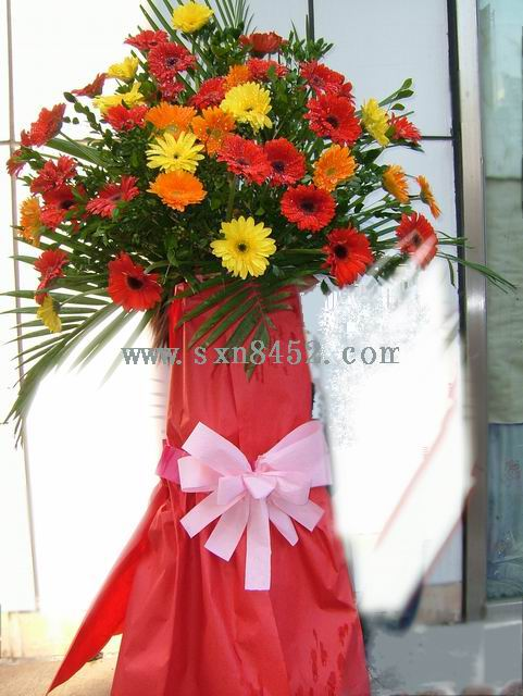 石夏兰日日高升,港式花篮,超低折扣价鲜花图片展示。