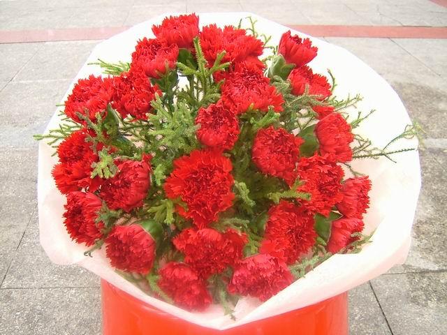 石夏兰24朵康乃馨圆型花束鲜花图片展示。