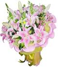 石夏兰粉红色香水百合6支鲜花图片展示。