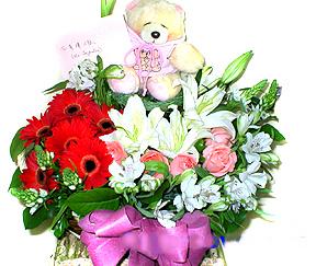 石夏兰儿童节日,快递儿童生日鲜花,红太阳儿童鲜花,生日鲜花,百合,玫瑰,太�花,配熊仔儿童节日鲜花儿童演出鲜花鲜花图片展示