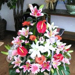 石夏兰手提开业花篮,天安数码城,送客户,公司送礼品,红掌鲜花图片展示。