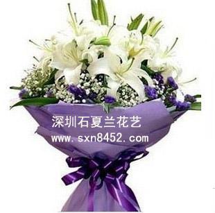 石夏兰11朵一生一世鲜花图片展示。
