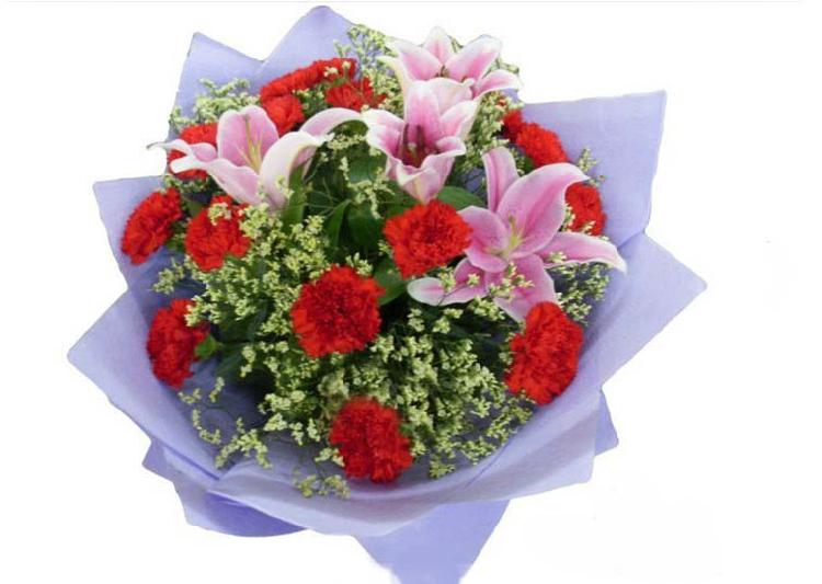 石夏兰康乃馨,生日鲜花,预订,玫瑰花,生日,领导,长辈生日鲜花,母亲生日礼品鲜花鲜花图片展示。