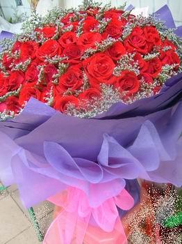 石夏兰101朵玫瑰鲜花图片展示。