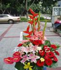 石夏兰【飞扬时代】,社交花篮商务花篮鲜花图片展示。