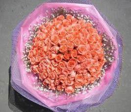 石夏兰99朵浅色粉玫瑰,送给意中人鲜花图片展示。