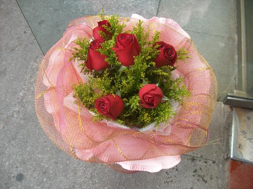 石夏兰6朵红玫瑰花鲜花图片展示。