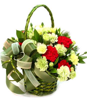 石夏兰红色康乃馨花束鲜花图片展示