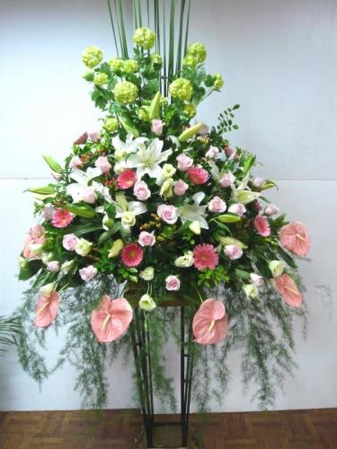 石夏兰布吉,西式庆典花篮,叶上花,太阳花,百合,玫瑰,开业花篮鲜花图片展示。